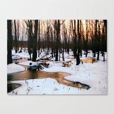 Emerging Pools Canvas Print