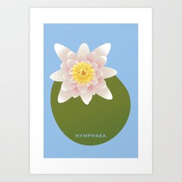 Nymphaea Art Print