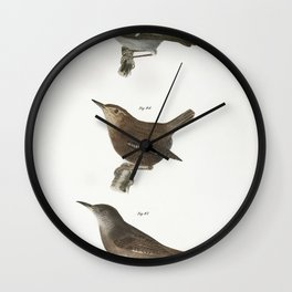 84 The Mocking-bird (Orpheus polyglottus) 85 The Cat-bird (Orpheus carolinensis) 86 The Wood Thrush Wall Clock