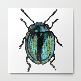 Blue Beetle Metal Print