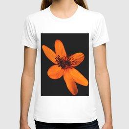 spring forest flower in the dark background T-shirt