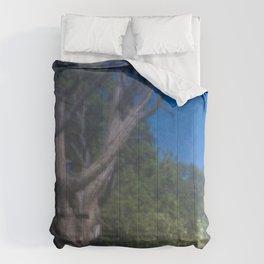 Grand Canyon Tree Comforters