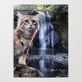 Bobby Joe <3 Waterfalls Poster