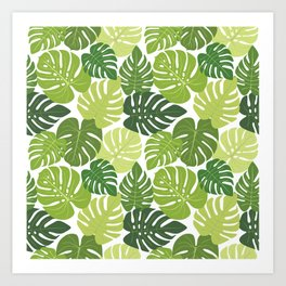 Monstera Leaves Pattern (white background) Art Print