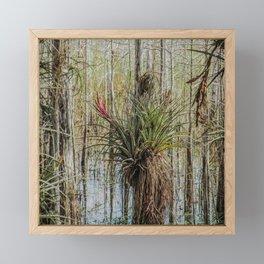 Unexpected Beauty Framed Mini Art Print