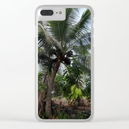 Coconut Palm Trees Clear iPhone Case