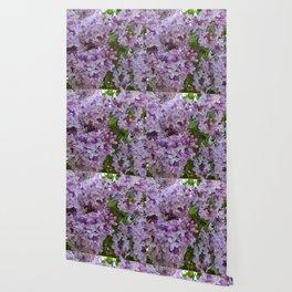 Lilac ~ Periwinkle Wallpaper