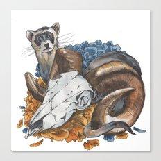 ferret and skull Canvas Print