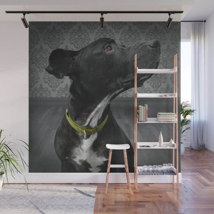 COBY (shelter pup) Wall Mural