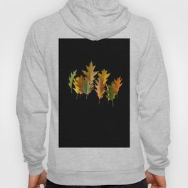 Variety coloured autumn oak leaves Hoody