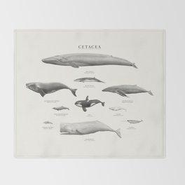 Cetacea Throw Blanket