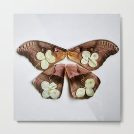 Moth with Yellow Flowers Metal Print