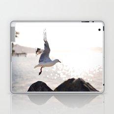 Seagull takes flight over Dunedin's MacAndrew Bay Laptop & iPad Skin