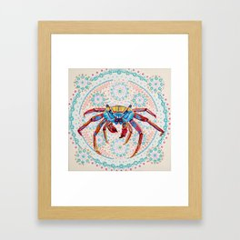 Grapsus Framed Art Print