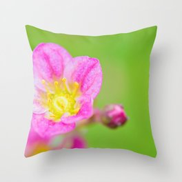 Macro pink flower over green background Throw Pillow