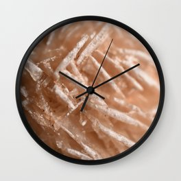 Desert Rose Wall Clock