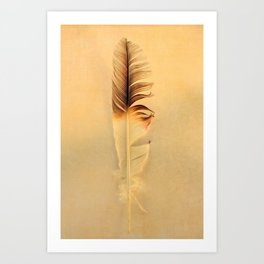 FEATHER PHOTOGRAPHY, FEATHER NATURE PHOTO WALL ART, BIRD FEATHER PRINT Art Print