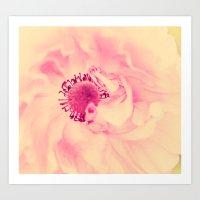 aelwen Art Prints featuring Pink Poppy by Aelwen