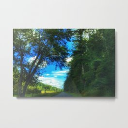 Blue Ridge Parkway No.1 Metal Print