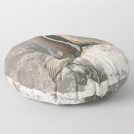 If anyone can, pelican Floor Pillow