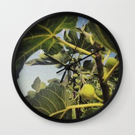 the smell of the fig tree Wall Clock