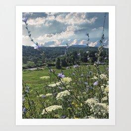 Wildflower Landscapes Art Print