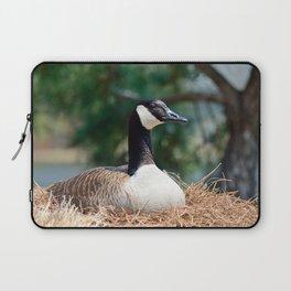 Nesting Canadian Goose Laptop Sleeve