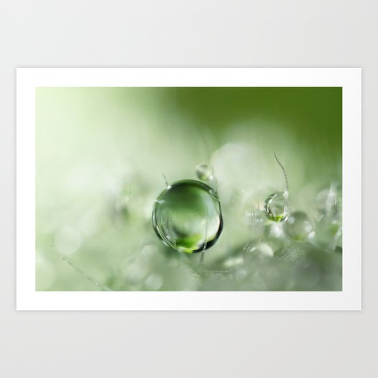 Poppy Leaf Green Art Print
