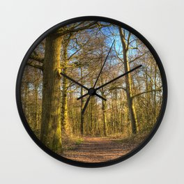 The Forest Path in Springtime Wall Clock