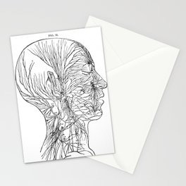 Anatomy of the Human Body Stationery Cards