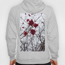 Redcurrant Berries on Fall Tree Hoody