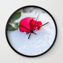 Majestic Gracious Pink Rose In Frozen Ice Close Up Ultra HD Wall Clock