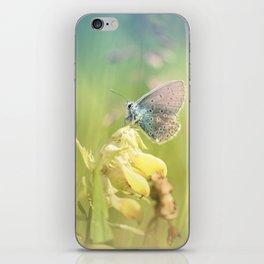 Dreamy serenity iPhone Skin