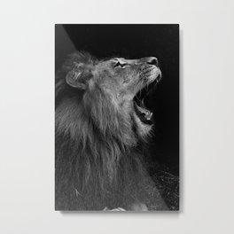 RELAX LION Metal Print
