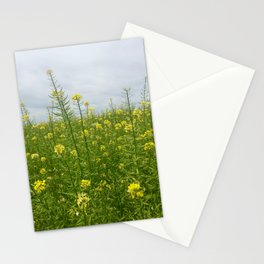 Field of Green and Gold Stationery Cards
