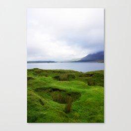 green grass carpet Canvas Print