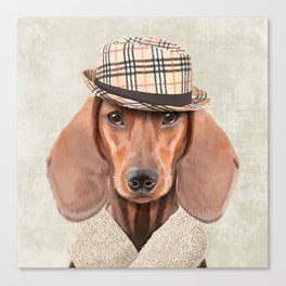 The stylish Mr Dachshund Canvas Print