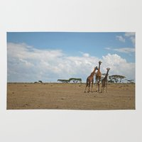 giraffes Area & Throw Rugs featuring Giraffes by wendygray