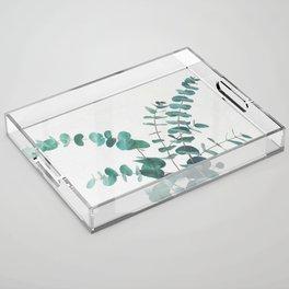 Eucalyptus II Acrylic Tray