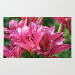 Beautiful flowers lilly Rug