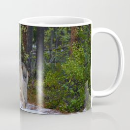 Wolf in Jasper National Park Coffee Mug