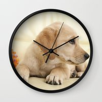labrador Wall Clocks featuring Labrador puppy by Elisabeth Coelfen