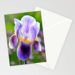 Iris Aglow Stationery Cards