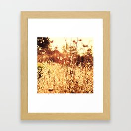 The Golden Hour Framed Art Print
