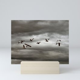October Storm, Headed Home (Snow Geese) Mini Art Print