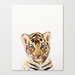 Baby Tiger, Baby Animals Art Print By Synplus Canvas Print