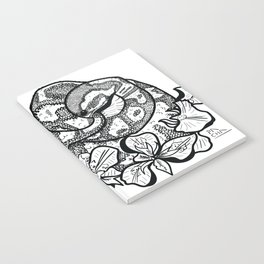 Python and iris flowers Notebook