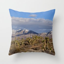 Winter in the Desert Throw Pillow