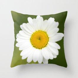 Beautiful Daisy Natural Green Background #decor #society6 #buyart Throw Pillow
