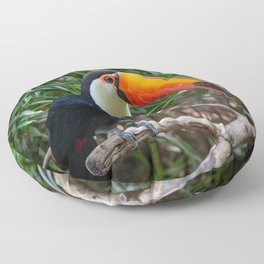 A toucan laid on a tree branch in the forest Floor Pillow